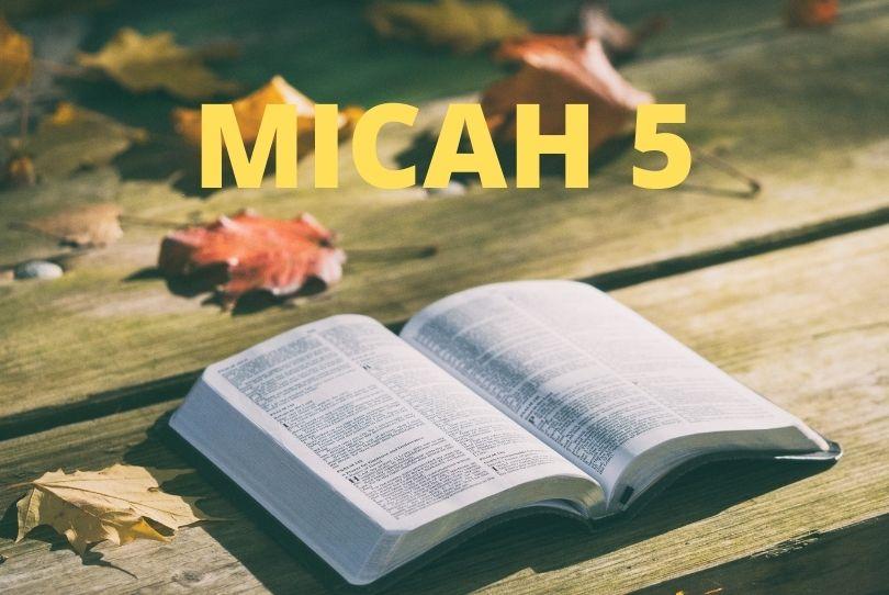 Micah 5