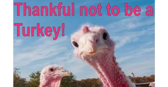 Thankful Thanksgiving 2019   Broad Way & Narrow Way (Matthew 7)