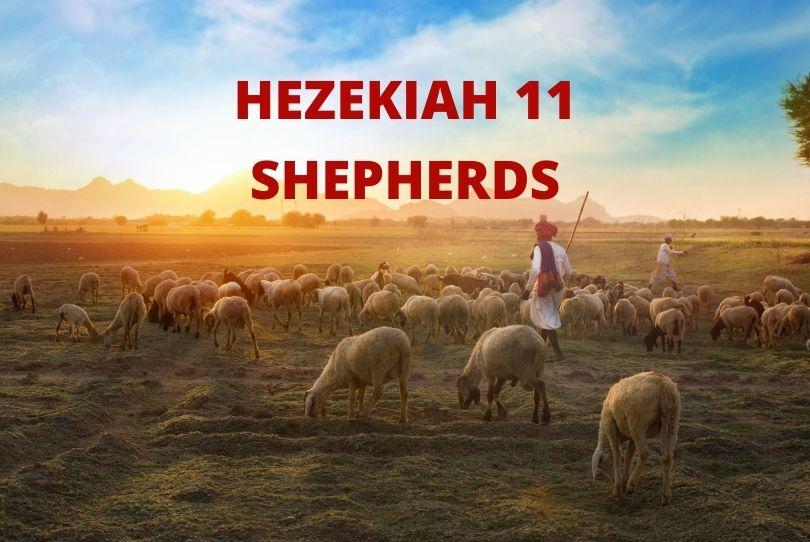 Hezekiah 11 Shepherds