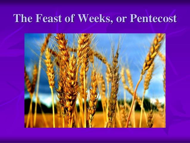 Feast of Weeks – Pentecost – Shavuot – Omer – Leviticus 23