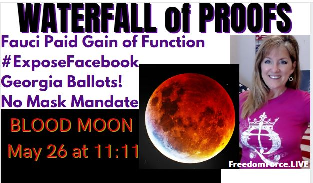 Waterfall of Proofs! BLOOD MOON 11:11! Facebook, Fauci Gain of Function, No Masks! 5-25-21